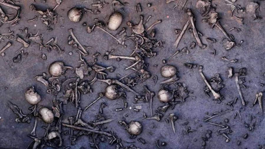 черепа и кости