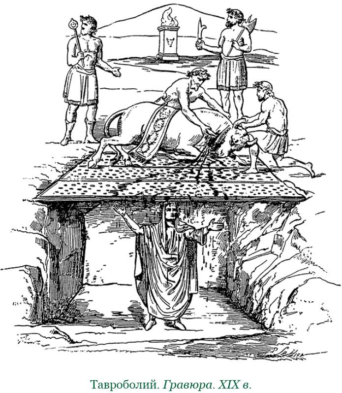 тавроболия