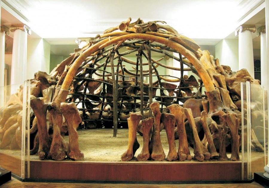 Дом из бивней и костей.