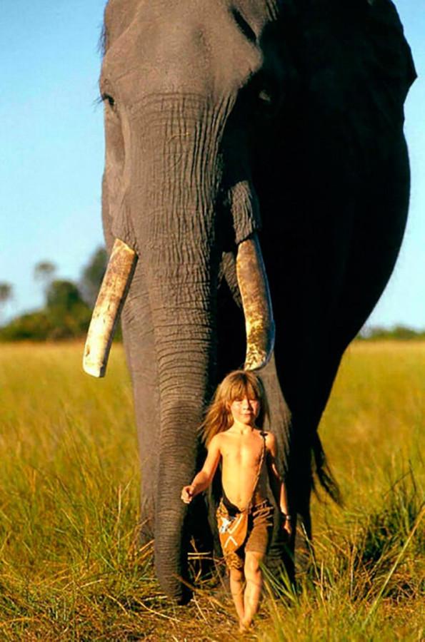 Типи и слон