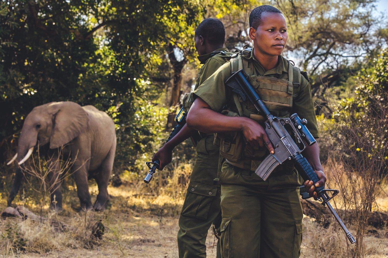 женщины-рейнджеры против браконьеров