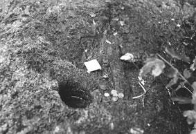 belarus holy stone 3