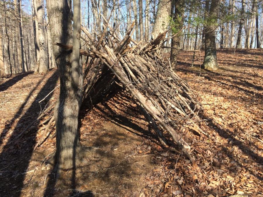 shelter original