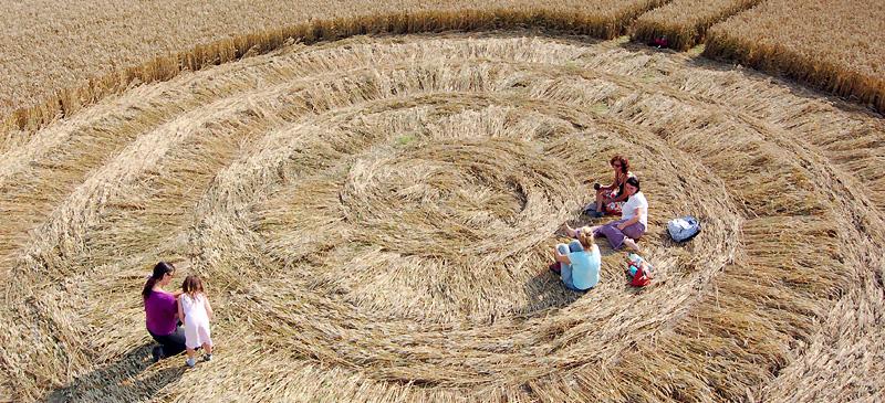круги на полях 4