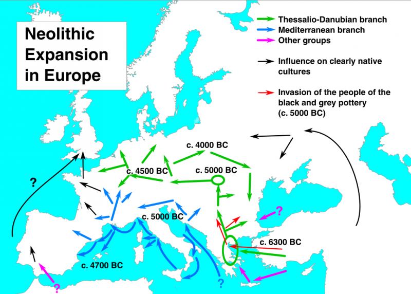 Сначала неолитчики пришли в Грецию. Зелёные стрелки это Дунайские культуры. Синие - Средиземноморские, а Фиолетовые - малоизученные мигранты, эдакие искатели счастья вне общего потока.