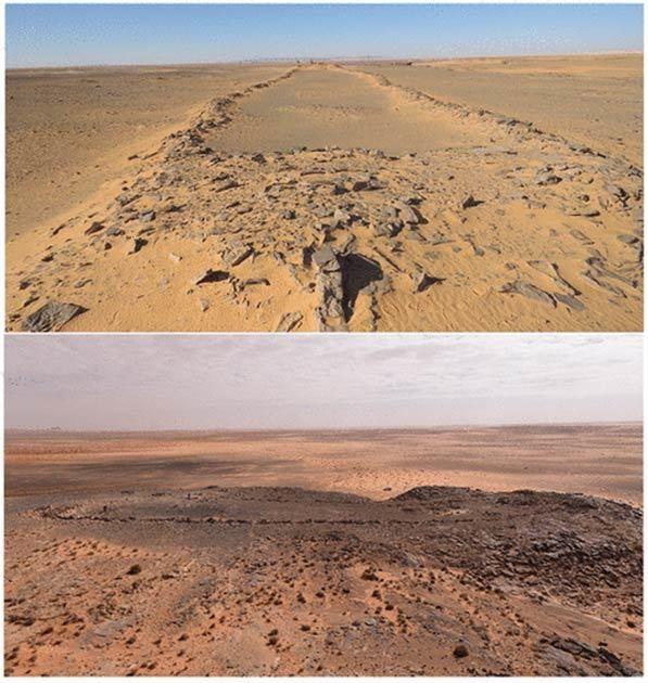 Два_мустатила_в_пустыне_Нифуд