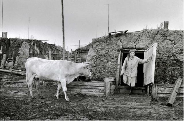Якутский хотон. Фото 80-х годов XX века.