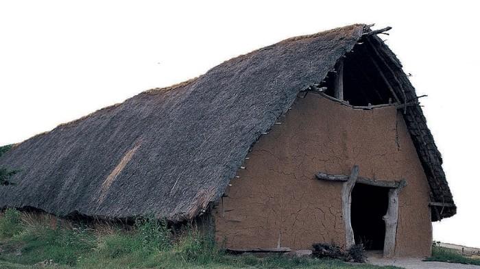 длинный дом