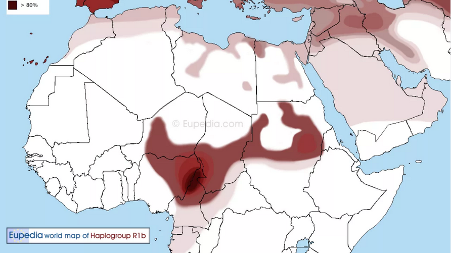 if your haplogroup is R1b, you are a nigger