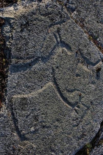 петроглифы 2
