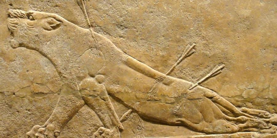 Раненая львица, Месопотамия