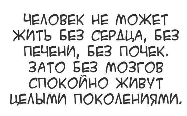 Без мозгов