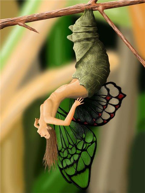 рождение-бабочки
