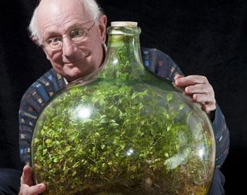 В Великобритании растение 40 лет растёт без полива