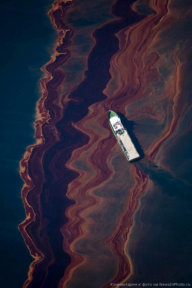 Последствия-разлива-нефти-BP-в-Мексиканском-заливе-по-прошествии-года-9