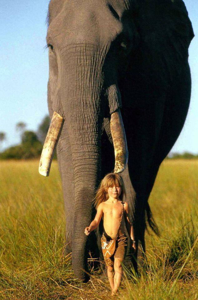 Типпи и слон