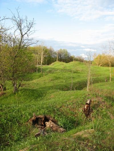 Курганное кладбище близ села Гнездово