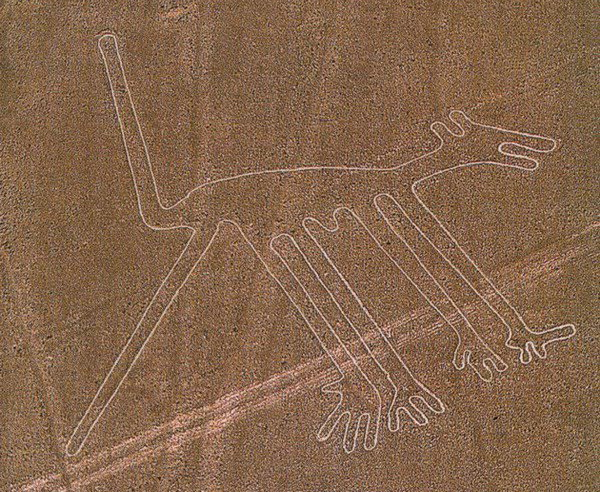 Рисунок пустыни Наска