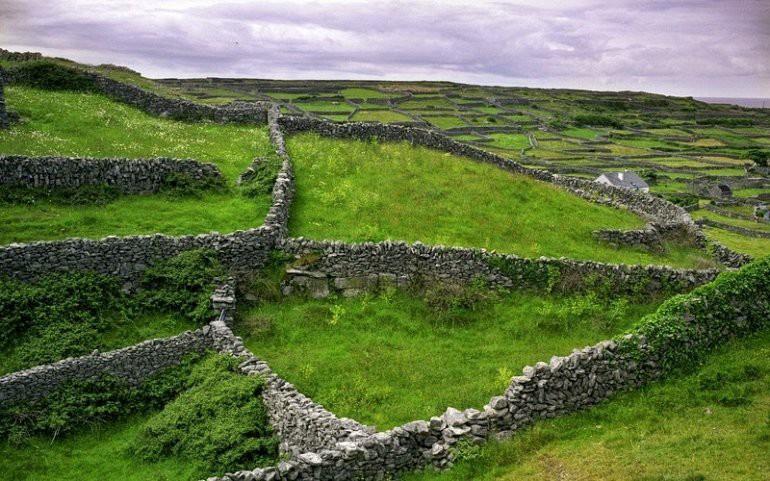 Каменные стены Ирландии 1