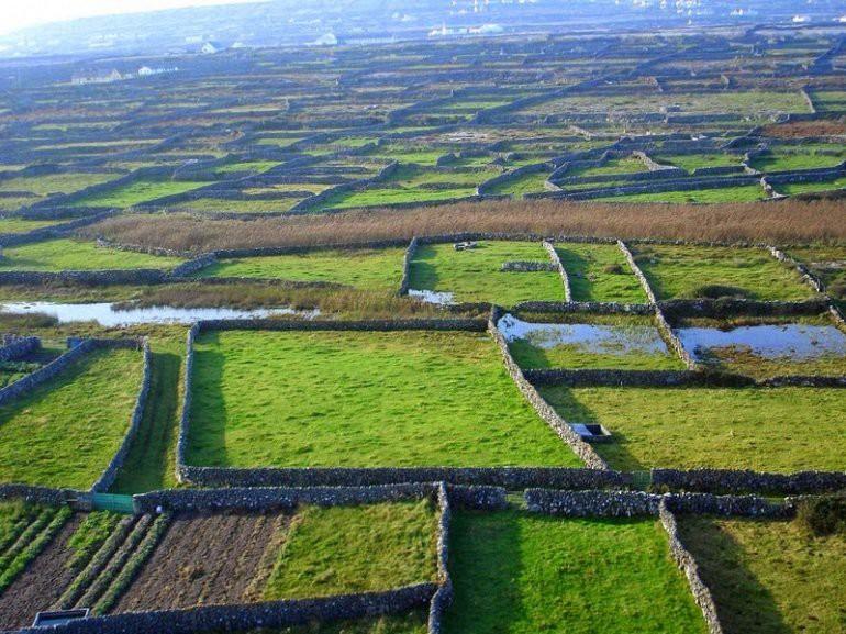 Каменные стены Ирландии 3