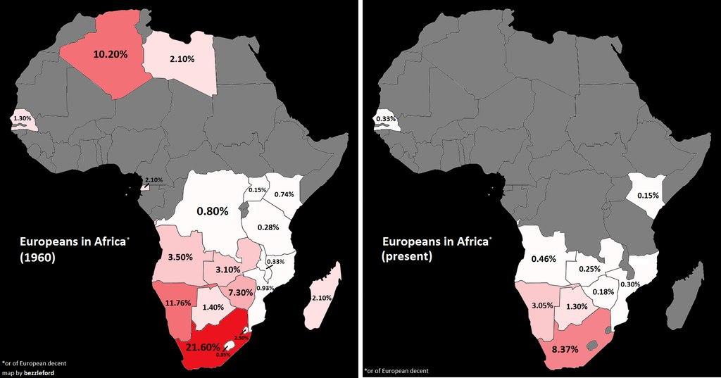 Процент белых людей в Африке