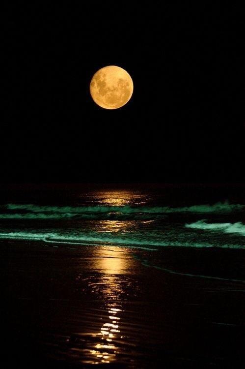 Море, ночь и луна