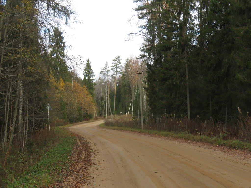 Волга 10