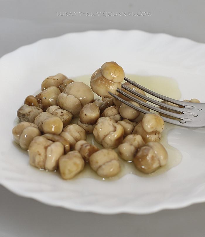 грибы боровики