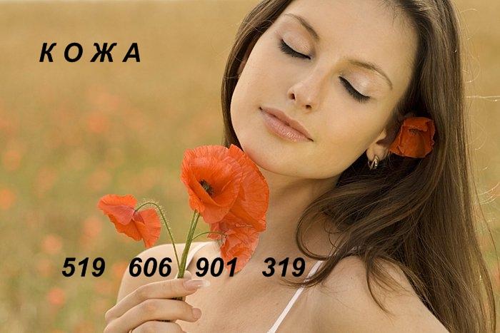 46357819_sml2p