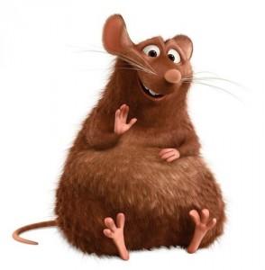 бодрый крыс