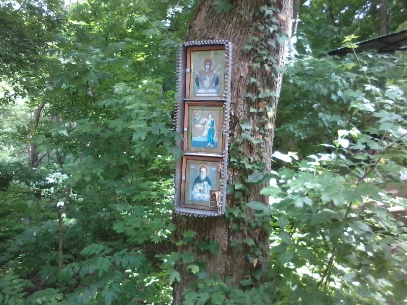 Свято троицкий источник 11ж