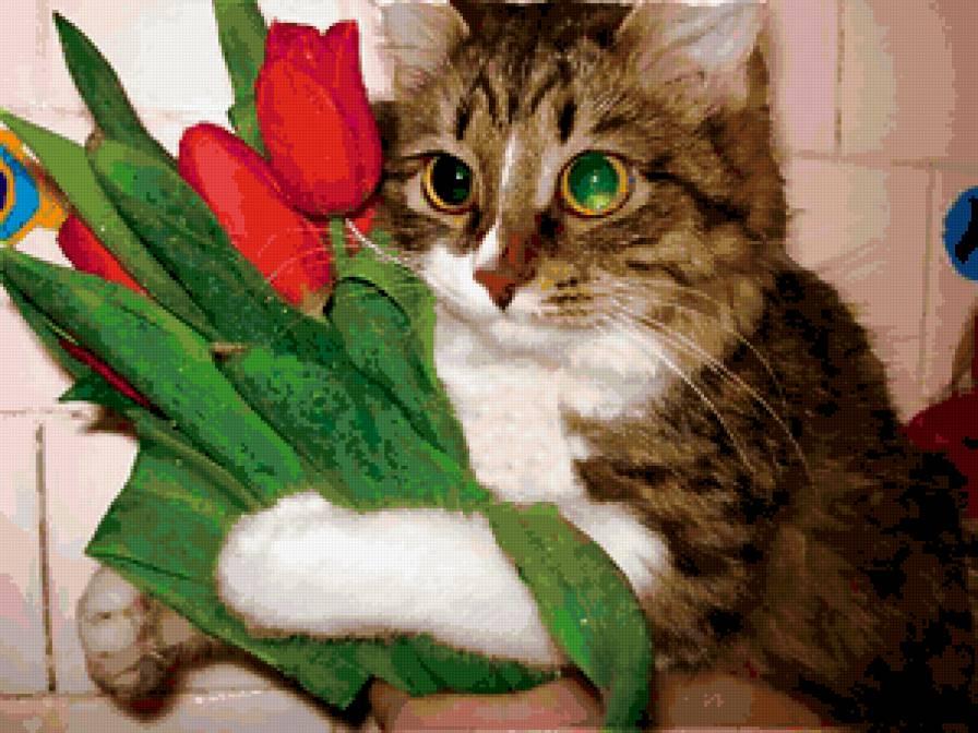 Котэ с цветами