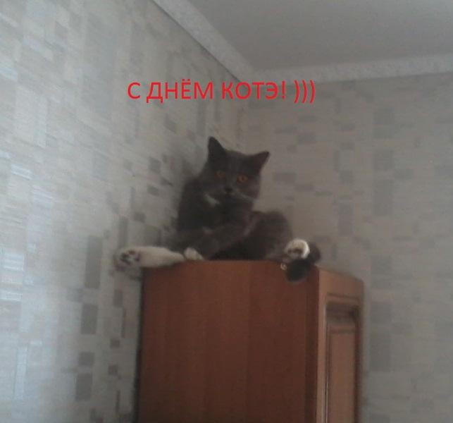 Лёля61
