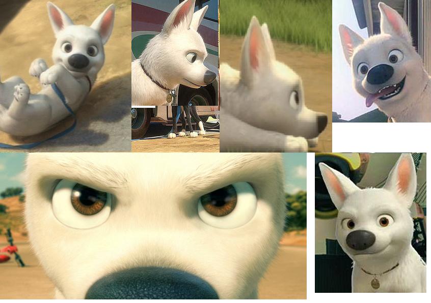 Bolt The Dog Foam Base Head Wanted Critique Redlines