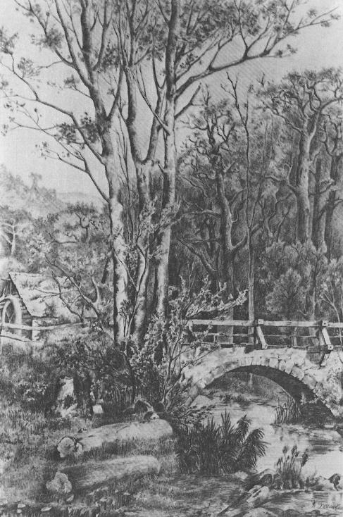 Мельница у лесного ручья 1884
