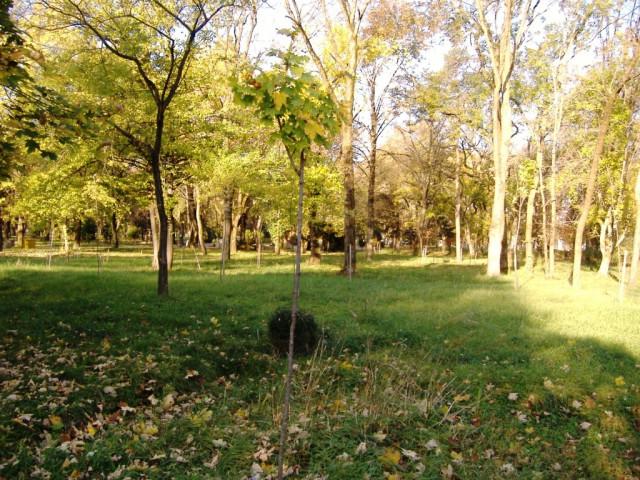 Нальчик. Парк. Атажукинский сад