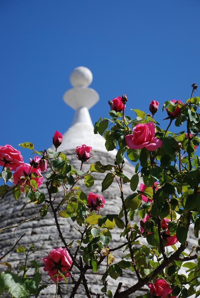 Alberobello 74a