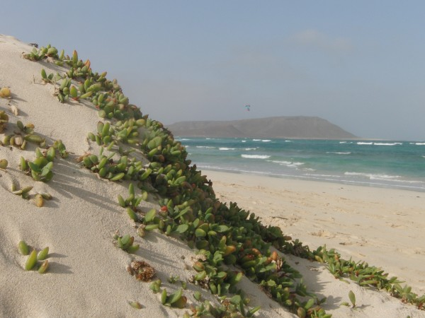 Kite Beach in Sal island, Cabo Verde