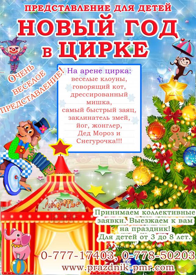 НГ в цирке копия