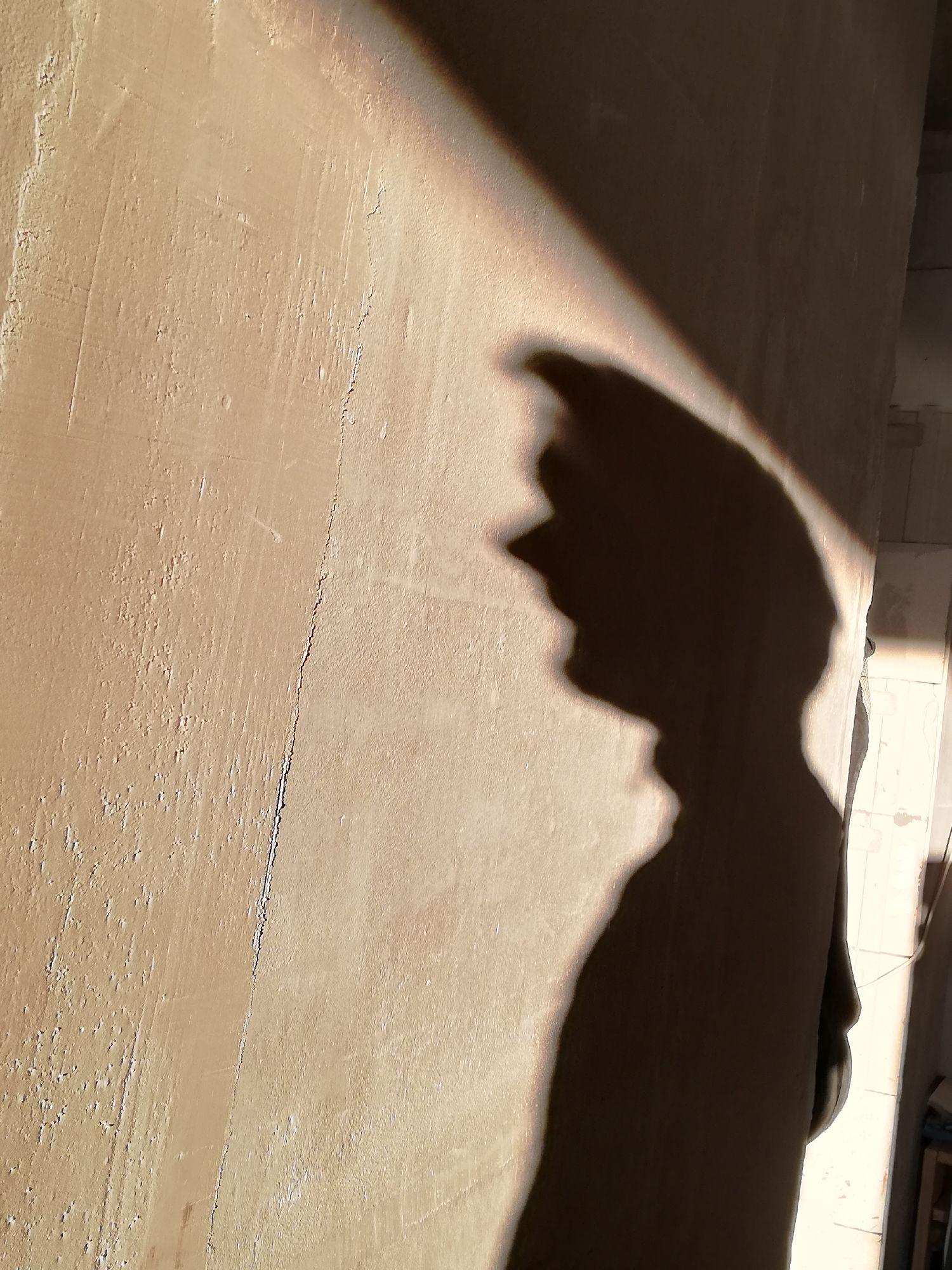 Дай ка сфоткаю свою тень..