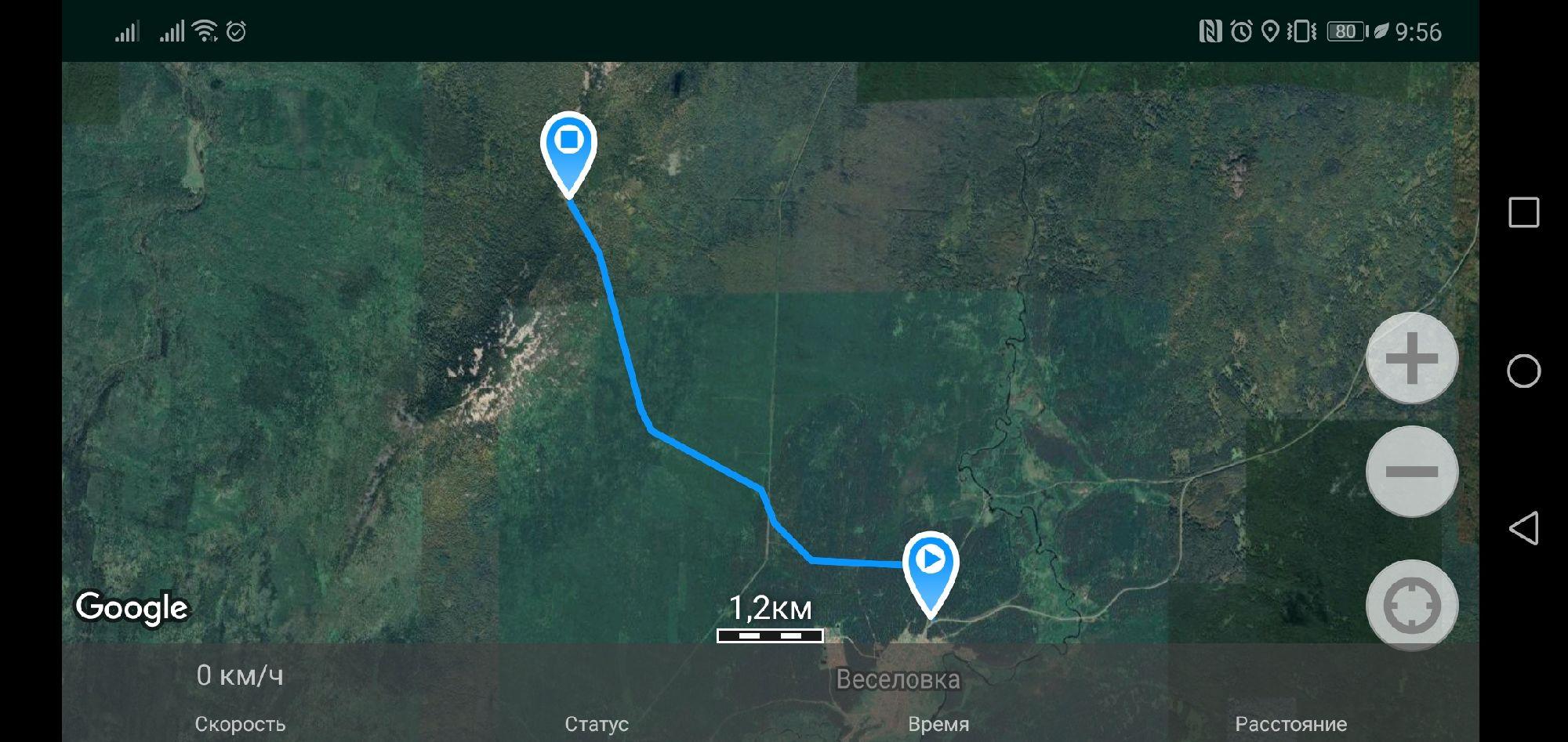 Трек дороги через лес до ретранслятора