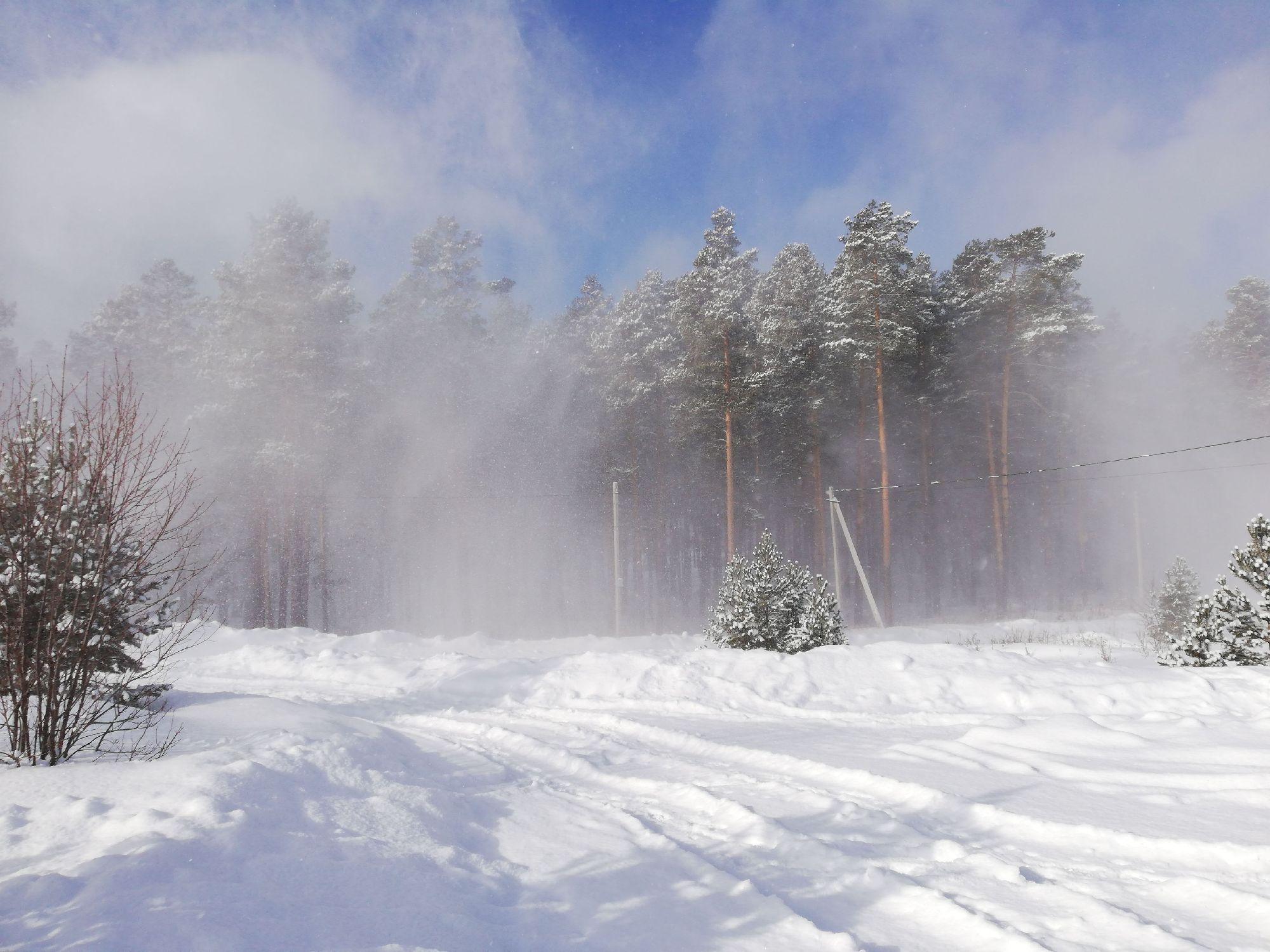 снежок полежал на деревьях и полетел дальше