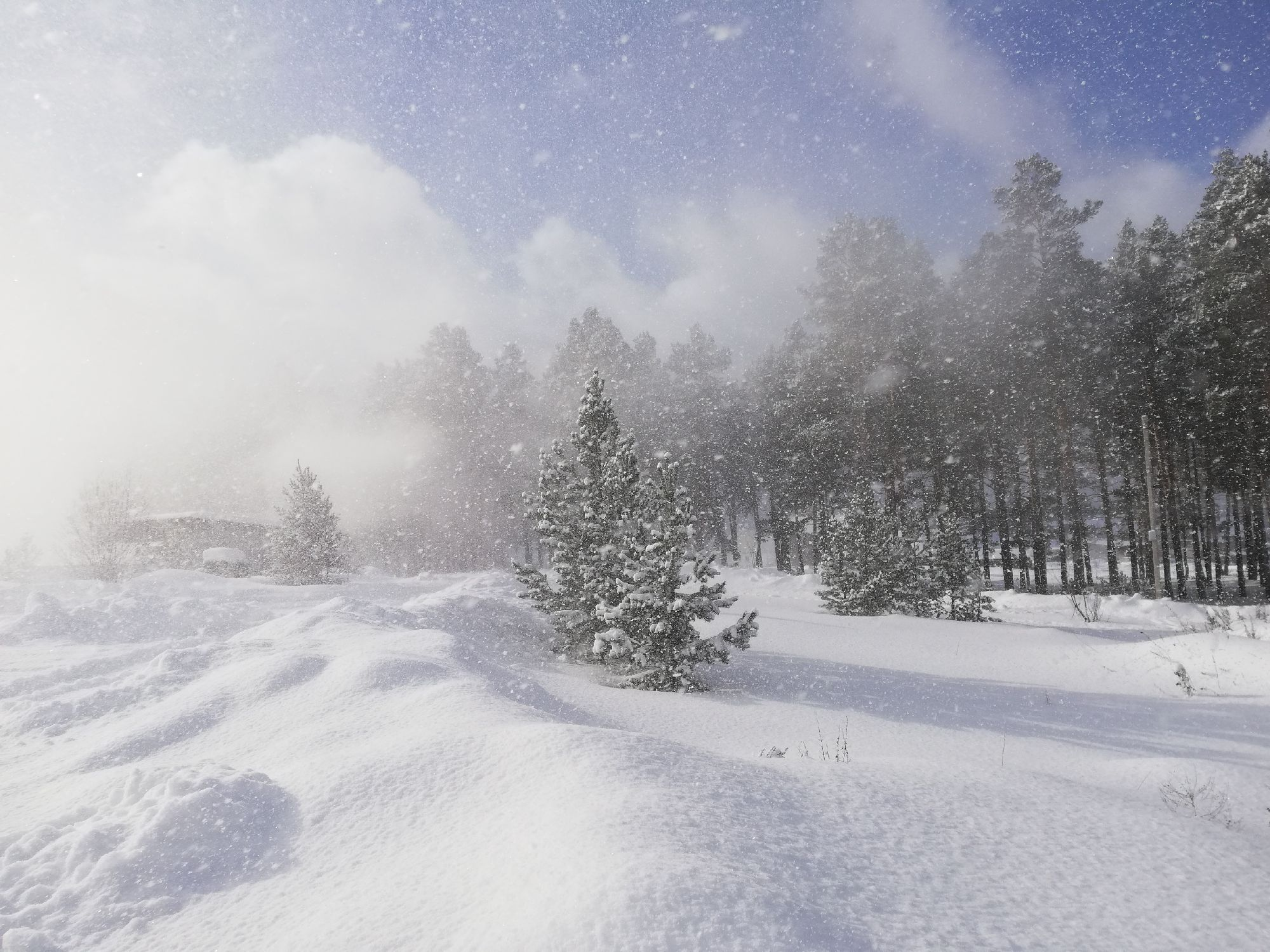 снежище!