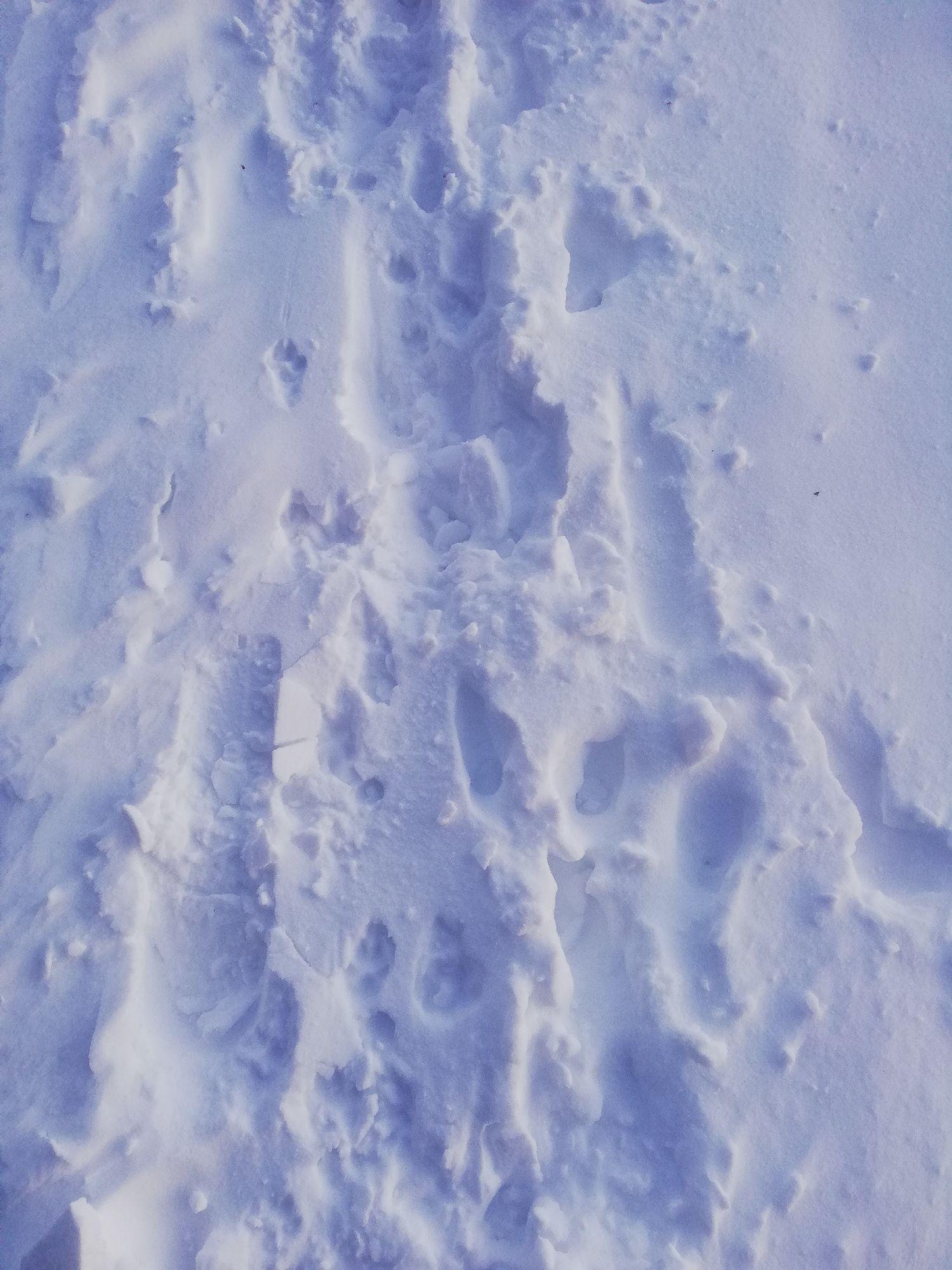 цвет снега был классный, не знаю как будет у вас на экранах. У меня на разных экранах по-разному)