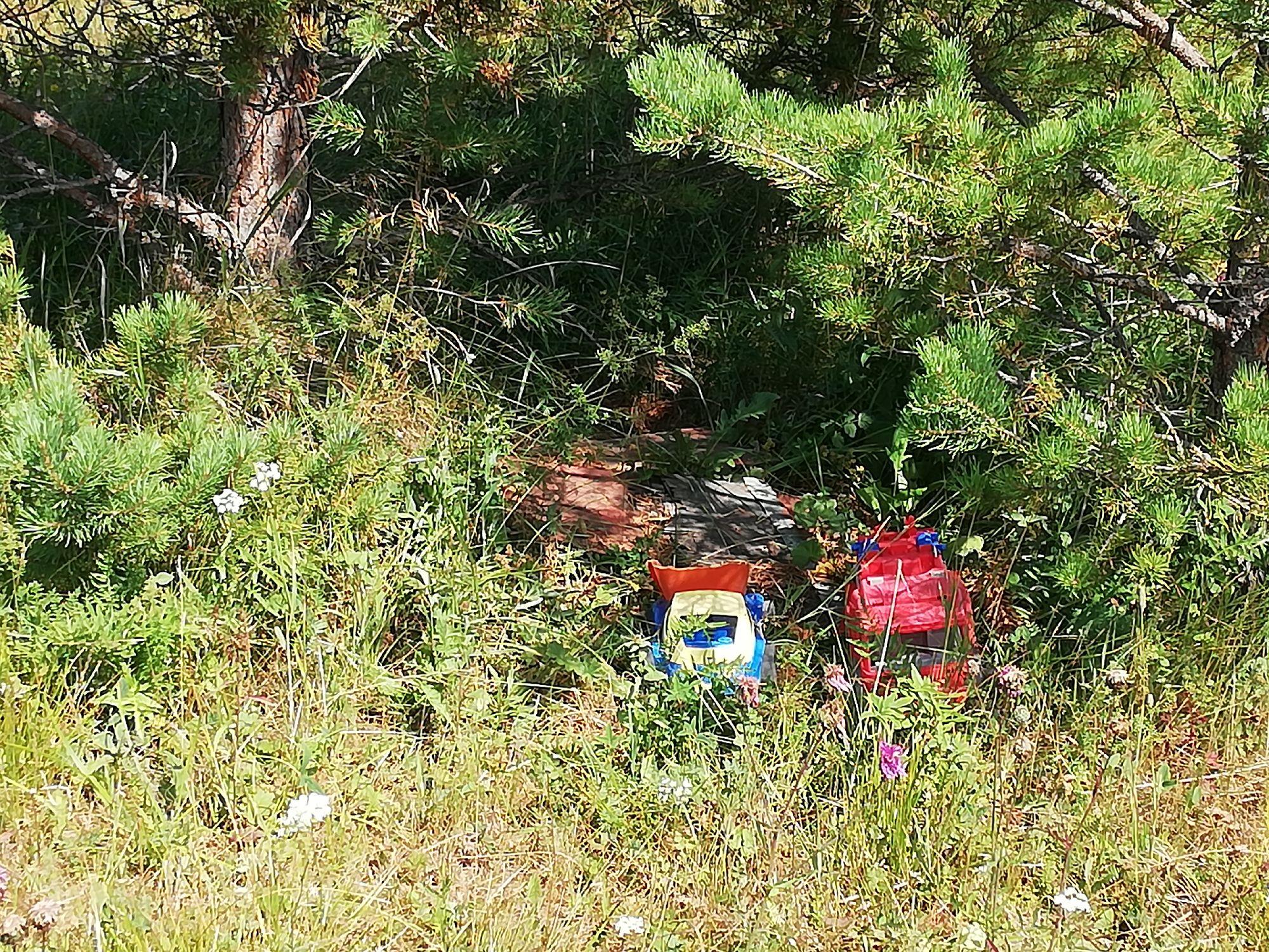 Странная находка - игрушки на опушке леса.