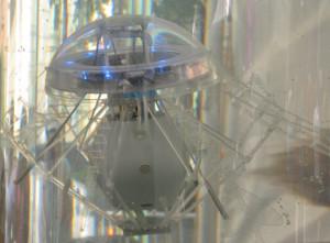 aquajellybot