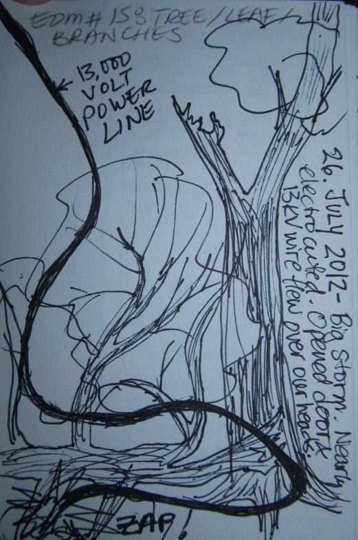 edm15tree