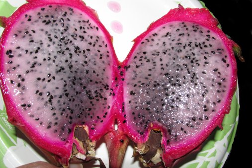 dragonfruit2