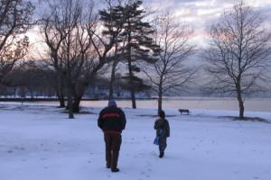 frozenpark1