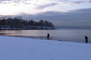 frozenpark2